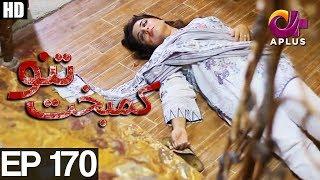 Kambakht Tanno - Episode 170   A Plus ᴴᴰ Drama   Shabbir Jaan, Tanvir Jamal, Sadaf Ashaan