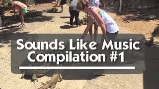 Sounds Like Music Compilation