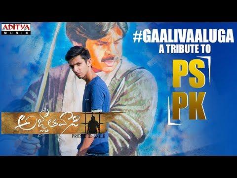 Xxx Mp4 Gaali Vaaluga A Tribute To PSPK 3gp Sex