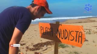 PLAYA NUDISTA                          (videos que dan risa chistoso bromas) Acapulco 2014