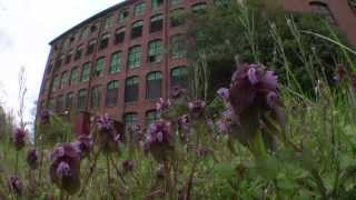 Reflections on Loray Mill