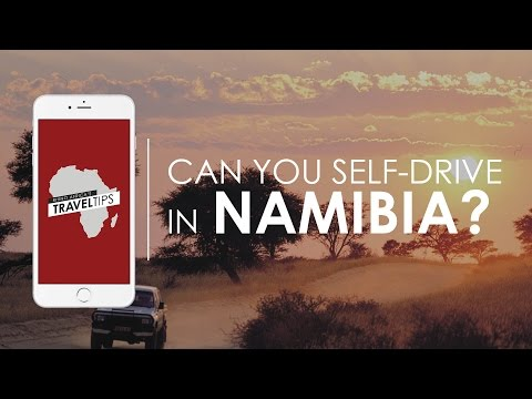 Can you self-drive in Namibia? Rhino Africa's Travel Tips