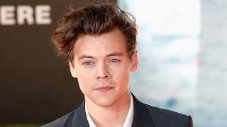 Harry Styles DEFENDS Fans At Dunkirk Movie Premiere