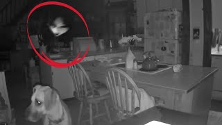 5 Most Paranormal Sightings That Were Accidentally Captured on Camera