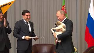 سگ نژاد اصیل، هدیه رئیس جمهور ترکمنستان به ولادیمیر پوتین