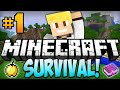 "Download Video Minecraft Survival Let's Play EP.1 - ""DIAMONDS ALREADY!"" 3GP MP4 FLV"