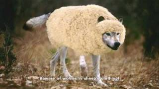 Jesus IS God, Beware of Wolves in Sheep's Clothing!
