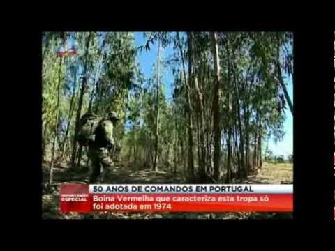 Comandos sic 13 12 2012