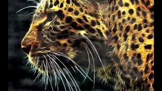TEEYAH Feat LE MOLARE  - Zigui Zagua (Djagoire Remix)