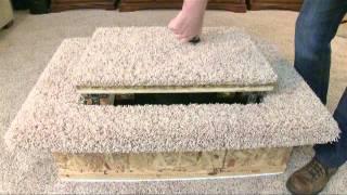 Floor Model Video