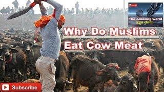 Why Do Muslims Eat Cow Meat || Musalman gaye ka gosht kyun khate hai || Hindi हिन्दी