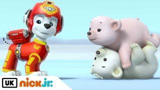 Paw Patrol | Pup Save the Polar Bears | Nick Jr. UK
