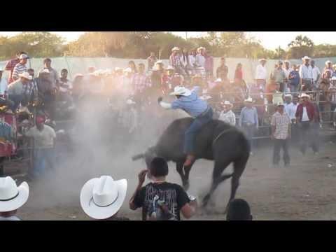 Jaripeo en Zomatlan 2013 Toros