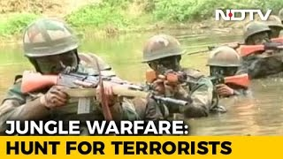 Trained To Eat Snakes And Scorpions: Inside India's Jungle Warfare School