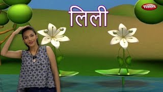 Lily Song For Babies | Hindi Rhymes For Children With Actions | हिंदी बालगीत | Baby Rhymes Hindi