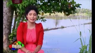 My Wasuliya programme