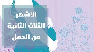 الفترة الثانيه من الحمل مع رولا القطامي