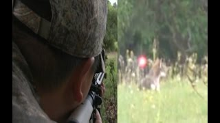 9mm tracer bomb hits coyote in the head!