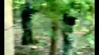 san fernando airsoft team strikes