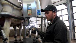 How Dairy Cows Are Milked - Breakfast on the Farm