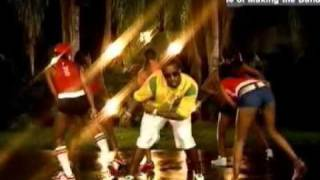 Nelly, P Diddy, and Murphy Lee   Shake Ya Tailfeather Bad Boys 2 Soundtrack