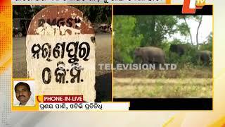 Elephant damages scorpio vehicle
