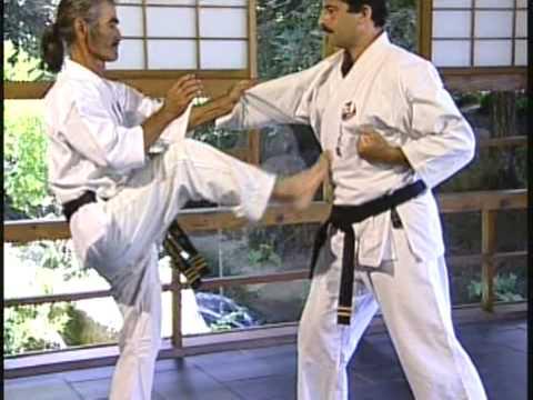 Uechi ryu combat strategy