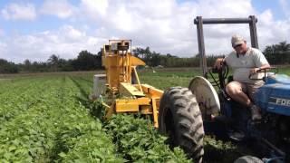 OXBO/Pixall BH100 Green Bean Harvester