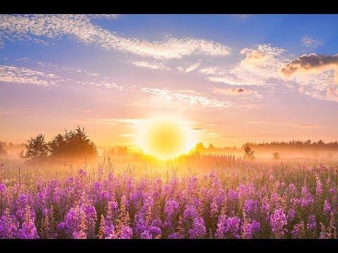 Xxx Mp4 GOOD MORNING MUSIC ➤ 528Hz Positive Energy ➤ Soothing Beautiful Deep Morning Boost Meditation Music 3gp Sex