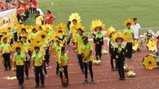 APSS Primary Yellow House March Pass Part 1
