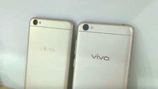 Vivo Y55svs Vivo Y53Comparison – Which is Better?