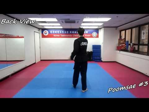 Xxx Mp4 Taekwondo Poomsae 3 Sam Jang Slow Motion Mirror 3gp Sex
