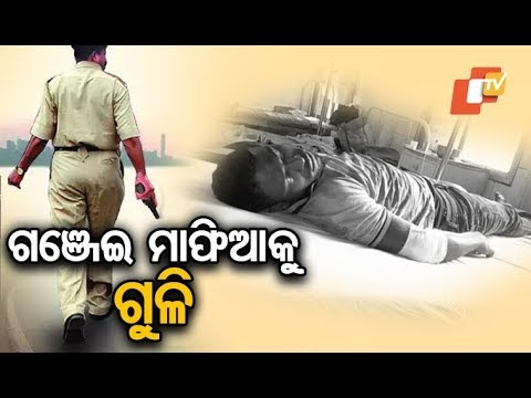 Xxx Mp4 Encounter Breaks Out Between Police And Ganja Mafia In Kandhamal 3gp Sex