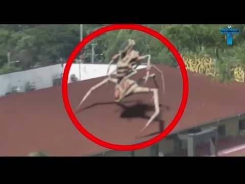 Top 10 Strange & Mysterious Videos That Cannot Be Explained Top10 Videosworld