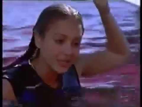 Xxx Mp4 Mermaid In Flipper The New Adventures The Dolphin 3gp Sex