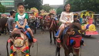 Naik Kuda di CNI Puri Jakarta Barat