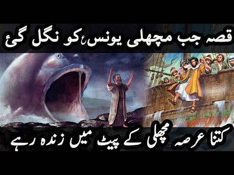 Xxx Mp4 Qissa Yunus AS Aur ٘Machli Ka Story Of Prophet Yunus Jonah A Fish Urdu 3gp Sex