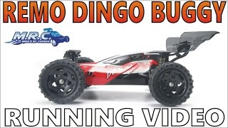 1/16 REMO DINGO Buggy Running Video! EP#319