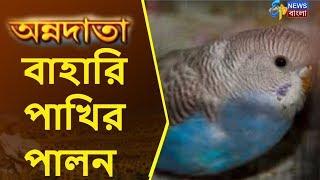 কি ভাবে করবেন বিদেশী বাহারি পাখির পালন? | Annadata | ETV News Bangla