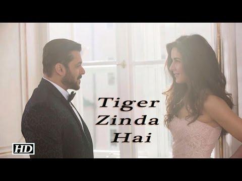 "Xxx Mp4 Tiger Zinda Hai"" First Look Salman Katrina Hot Chemistry 3gp Sex"