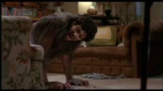 An American Werewolf In London   Full moon werewolf transformation scene