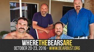 Where the Bears Are - Bear Bust XXVI