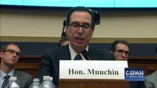 Exchange between Rep. Keith Ellison & Treasury Secretary Steve Mnuchin (C-SPAN)
