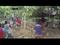 Polisi Datang Tiba Tiba Pelaku Judi Sabung Ayam Lari Mengibrit Ketakutan 86
