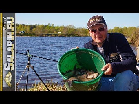 обучающее рыболовное видео