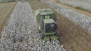 Gadash Bet Nir Cotton Harvest OCT 2014 גד