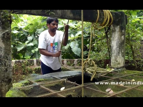 Cooking Spinach Tomato Dal Traditional Indian Village Style