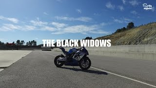 THE BLACK WIDOWS TRAILER