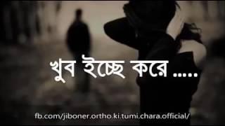TGH R jiboner ortho ki tumi chara my love story....