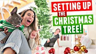 CHRISTMAS TREE DECORATING!! Setting up our tree for Christmas 2017!